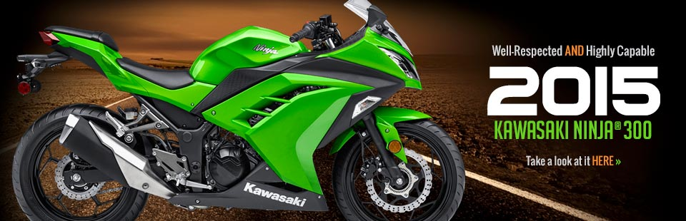 2015 Kawasaki Ninja® 300: Click here to view the model.