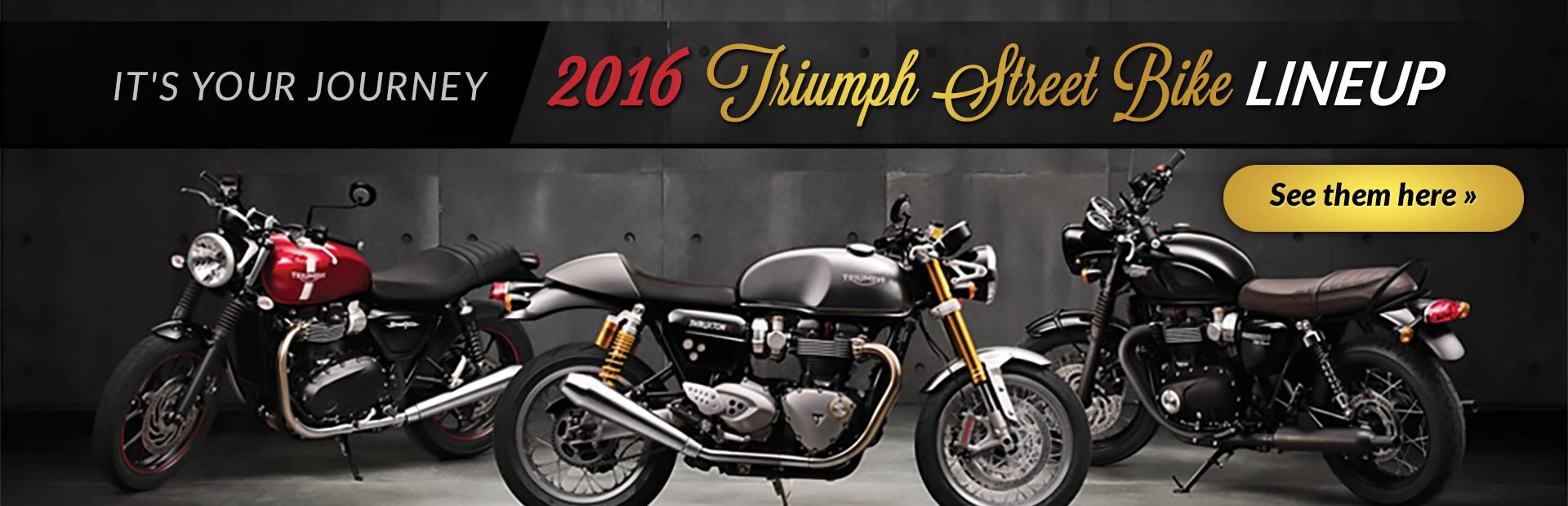 2016 Triumph Street Bike Lineup: Click here to view the models.