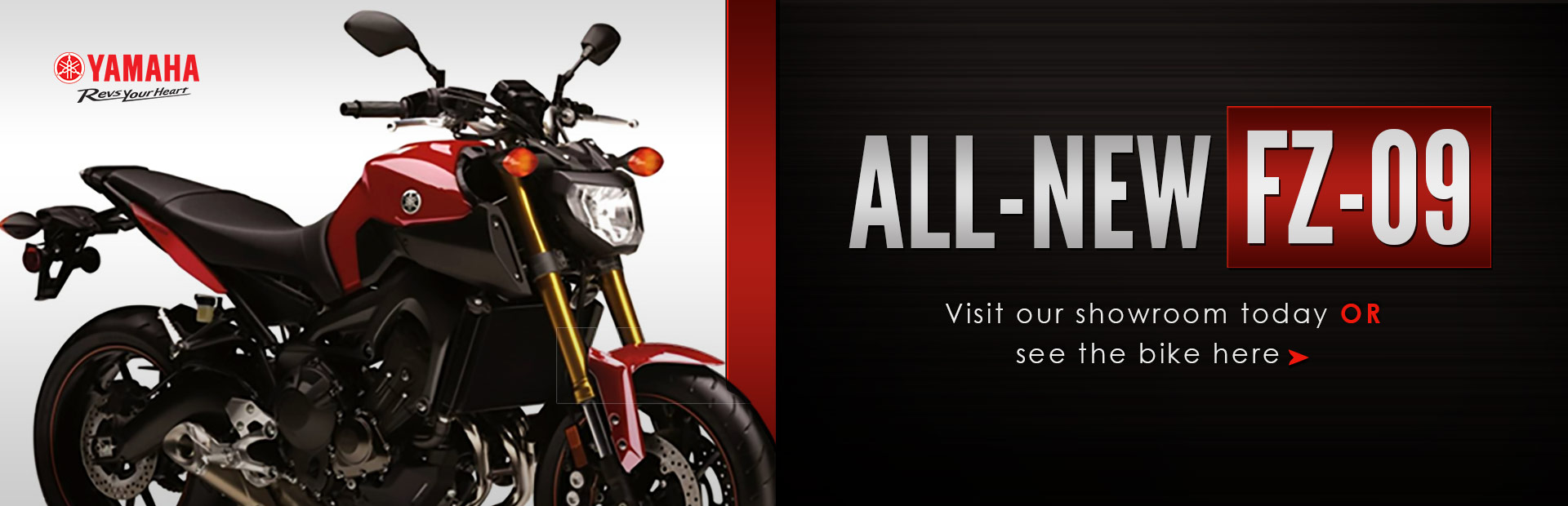 View the 2014 Yamaha FZ-09.