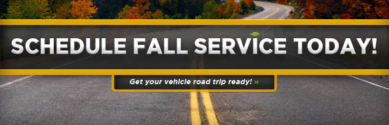 Schedule Fall Service Today